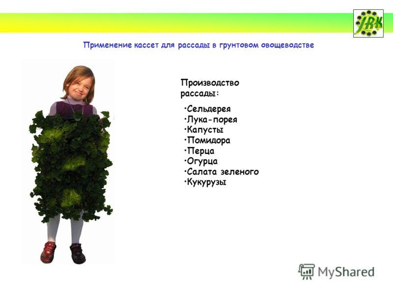 Применение кассет для рассады в грунтовом овощеводстве Производство рассады: Сельдерея Лука-порея Капусты Помидора Перца Огурца Салата зеленого Кукурузы