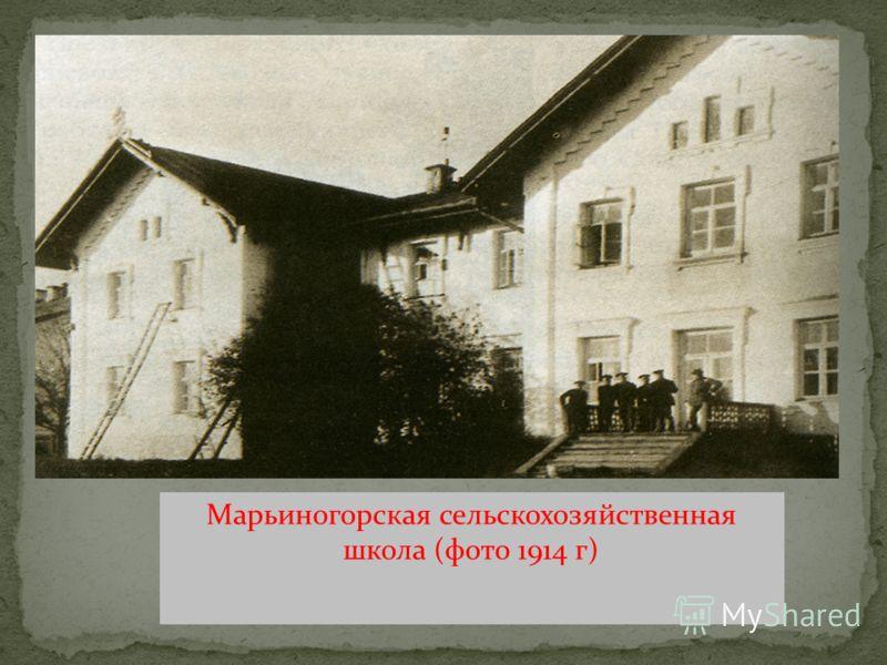 Марьиногорская сельскохозяйственная школа (фото 1914 г)