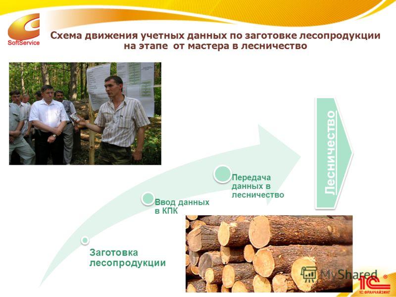 10 Схема движения учетных данных по заготовке лесопродукции на этапе от мастера в лесничество Заготовка лесопродукции Ввод данных в КПК Передача данных в лесничество Лесничество