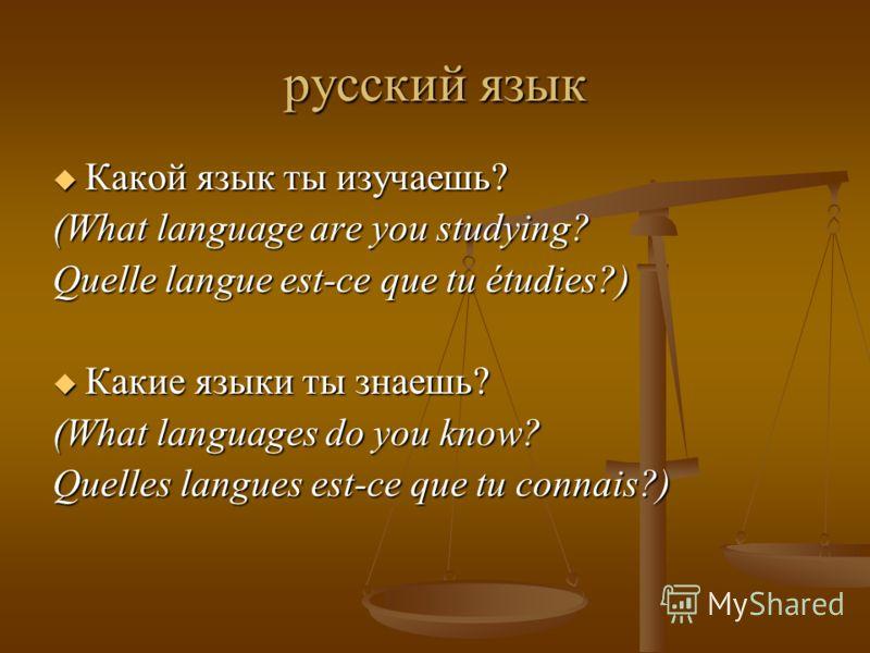 русский язык Какой язык ты изучаешь? Какой язык ты изучаешь? (What language are you studying? Quelle langue est-ce que tu étudies?) Какие языки ты знаешь? Какие языки ты знаешь? (What languages do you know? Quelles langues est-ce que tu connais?)