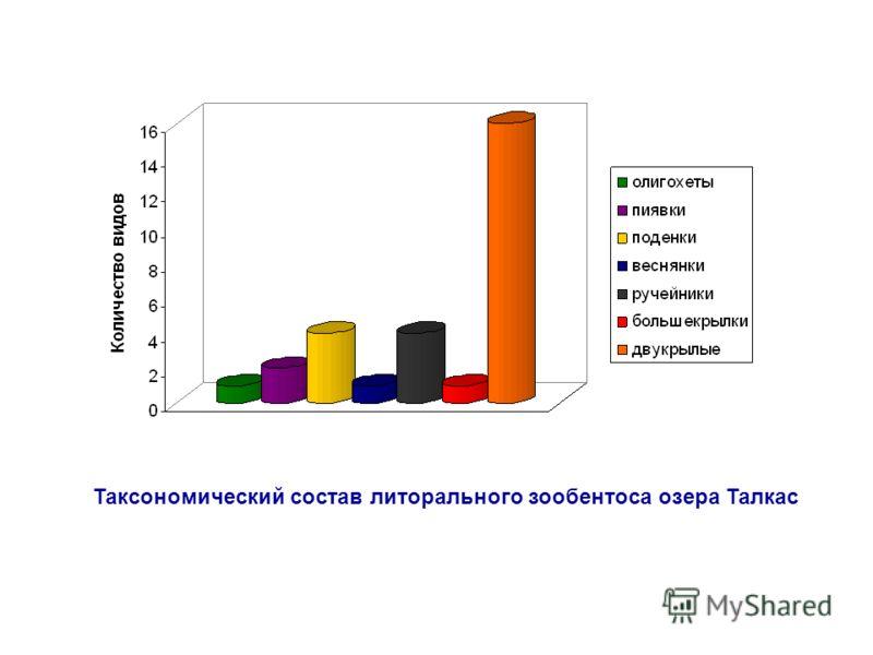 Таксономический состав литорального зообентоса озера Талкас