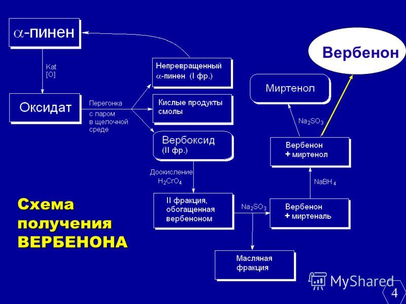Схема получения ВЕРБЕНОНА Вербенон 4