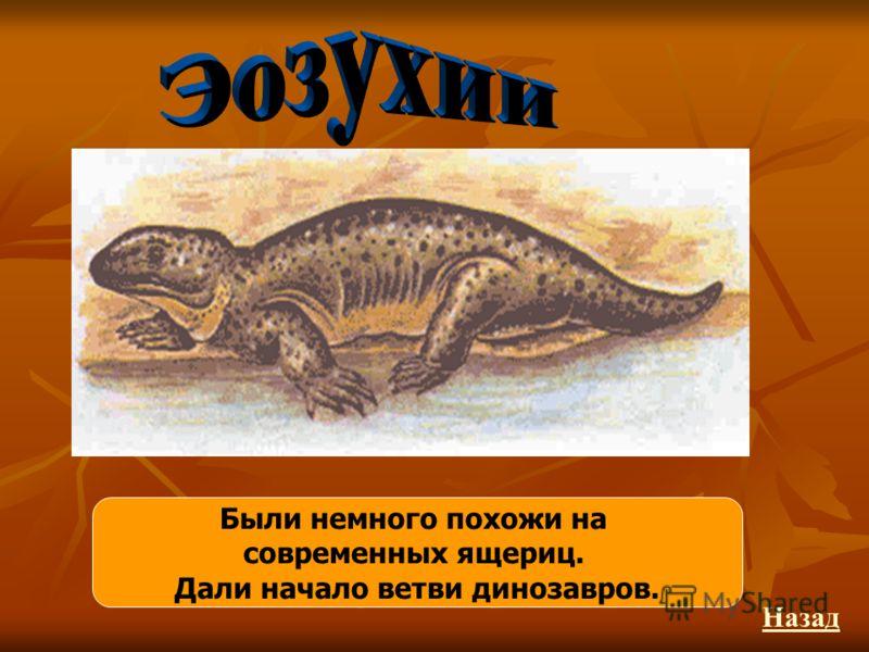 Были немного похожи на современных ящериц. Дали начало ветви динозавров. Назад