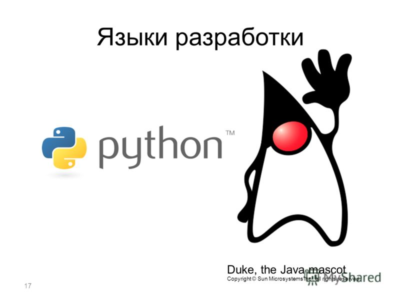 17 Языки разработки Duke, the Java mascot Copyright © Sun Microsystems Inc., all rights reserved.