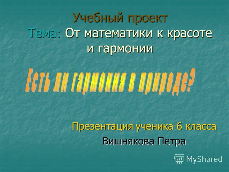 Учебный проект Тема: От математики к красоте и гармонии Презентация ученика 6 класса Вишнякова Петра