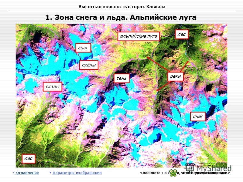 Высотная поясность в горах Кавказа 1. Зона снега и льда. Альпийские луга Оглавление Оглавление Параметры изображения альпийские луга лес тень снег скалы снег лес реки