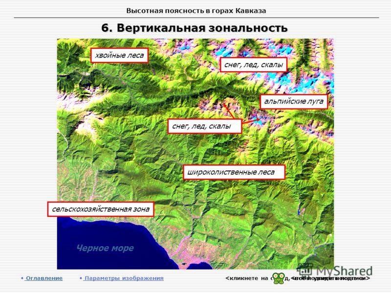 Высотная поясность в горах Кавказа 6. Вертикальная зональность Оглавление Оглавление Параметры изображения альпийские луга хвойные леса сельскохозяйственная зона широколиственные леса снег, лед, скалы Черное море