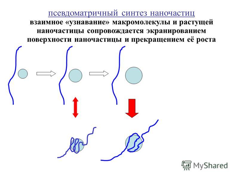 псевдоматричный синтез наночастиц взаимное «узнавание» макромолекулы и растущей наночастицы сопровождается экранированием поверхности наночастицы и прекращением её роста