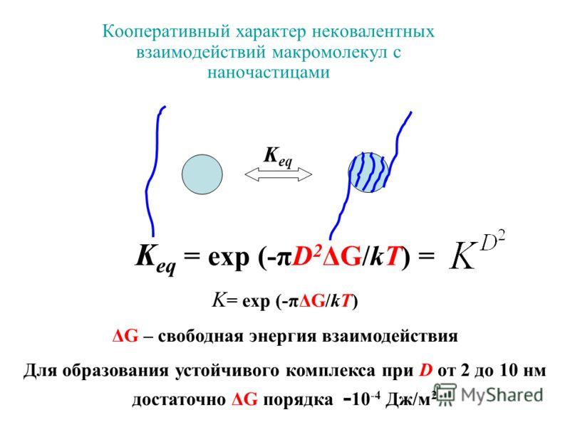 Кооперативный характер нековалентных взаимодействий макромолекул с наночастицами K eq = exp (-πD 2 ΔG/kT) = K = exp (-πΔG/kT) ΔG – свободная энергия взаимодействия Для образования устойчивого комплекса при D от 2 до 10 нм достаточно ΔG порядка - 10 -
