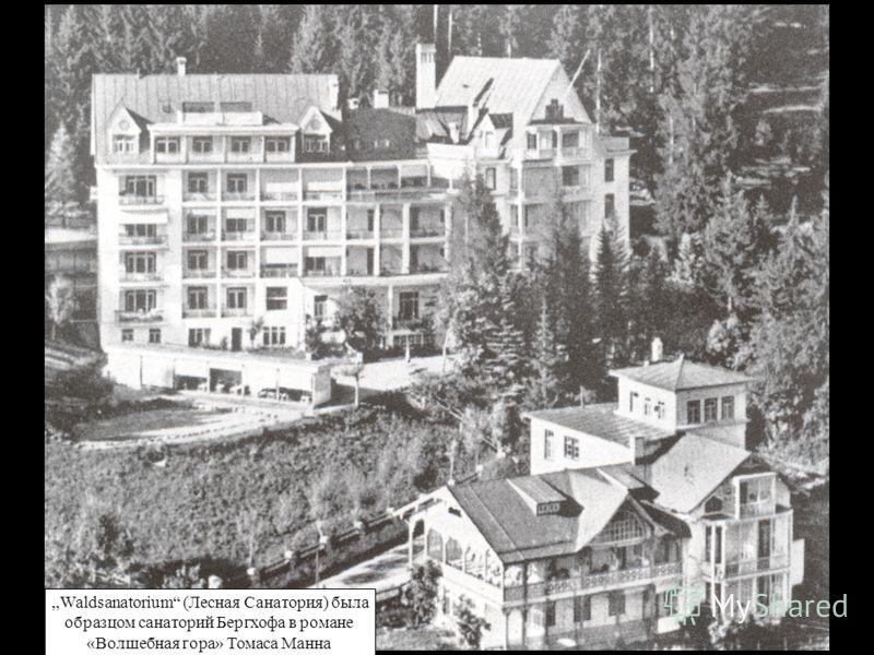 Waldsanatorium (Лесная Санатория) была образцом санаторий Бергхофа в романе «Волшебная гора» Томаса Манна