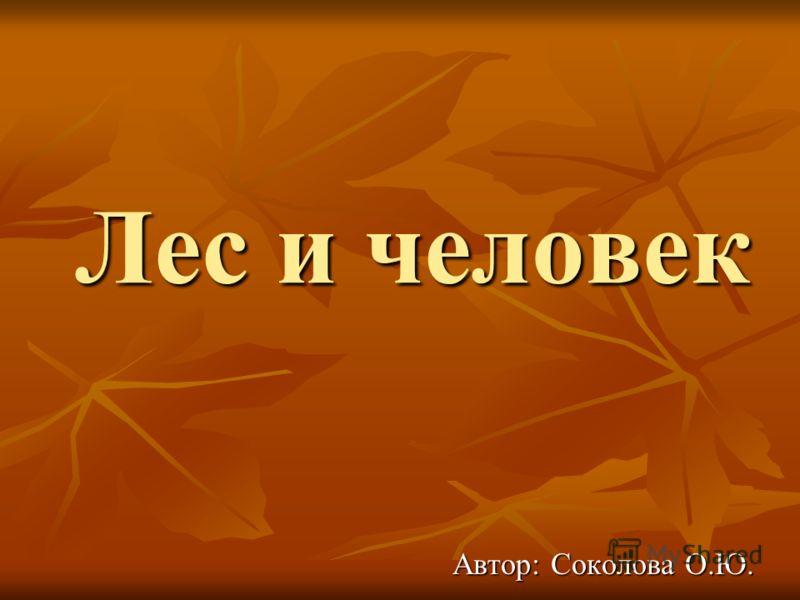 Лес и человек Автор: Соколова О.Ю.