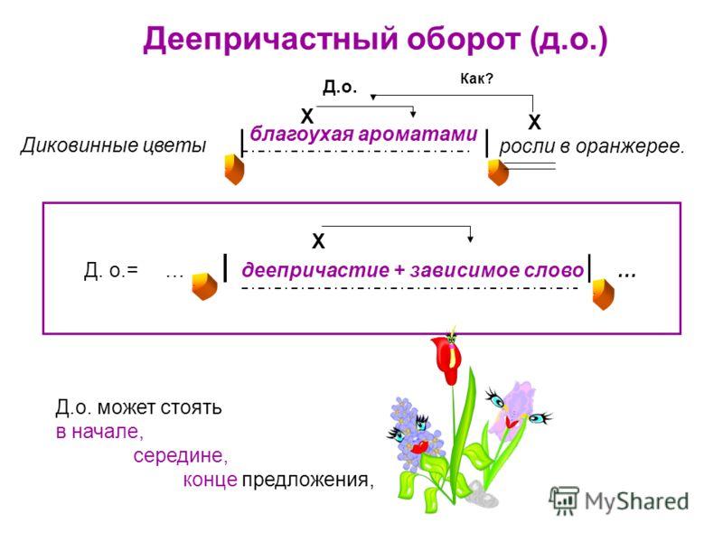 Деепричастный оборот (д.о.) Д.о. Как? Х Х Х Д.о. может стоять в начале, середине, конце предложения, Д. о.= … деепричастие + зависимое слово … благоухая ароматами росли в оранжерее. Диковинные цветы