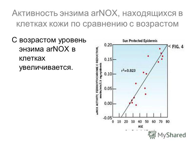 Активность энзима arNOX, находящихся в клетках кожи по сравнению с возрастом С возрастом уровень энзима arNOX в клетках увеличивается.