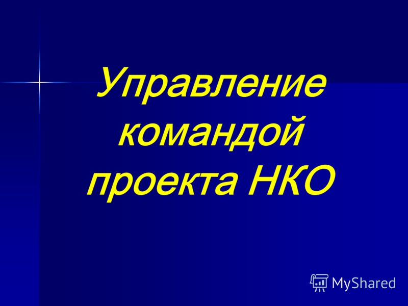 Управление командой проекта НКО