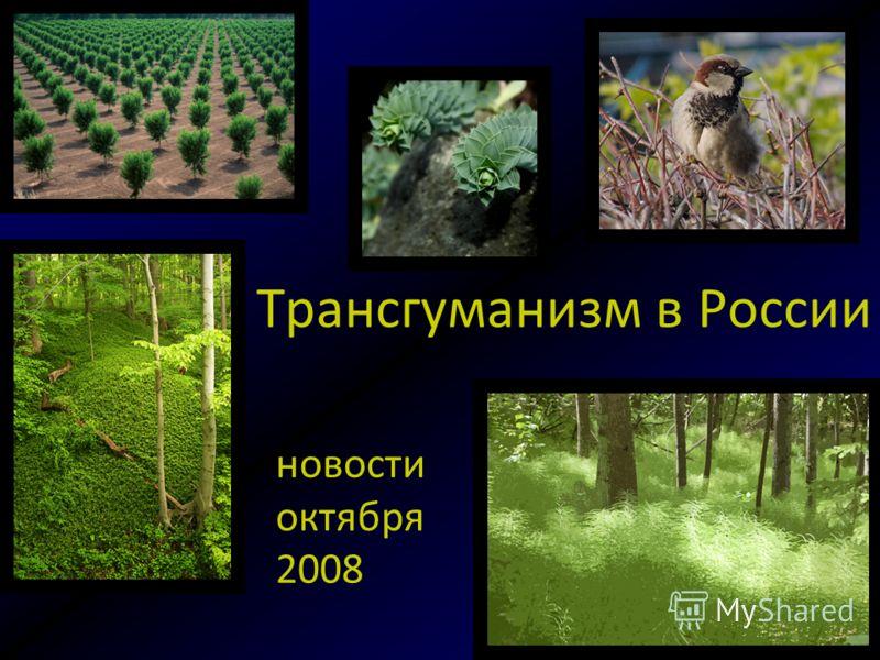 Трансгуманизм в России новости октября 2008