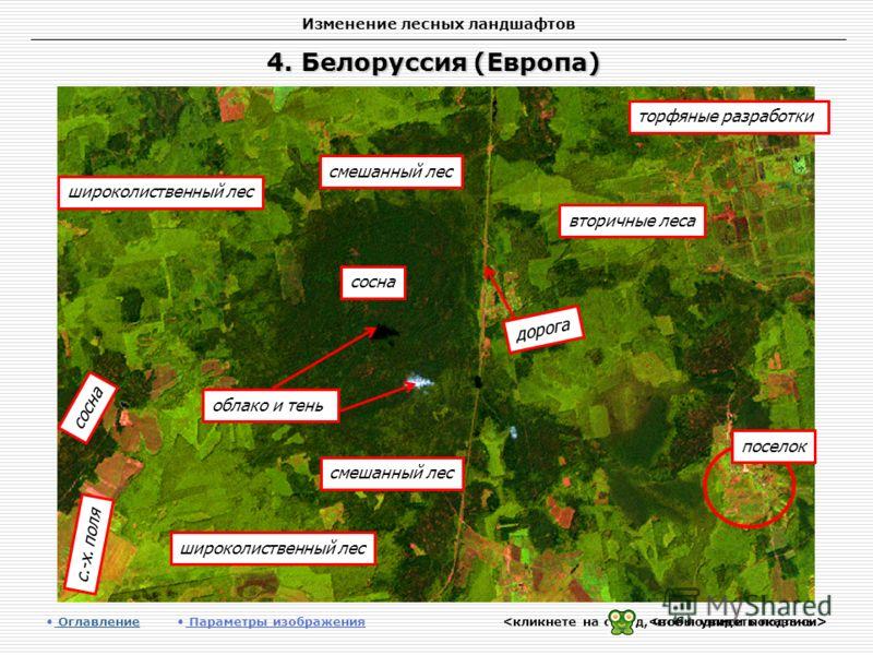 Изменение лесных ландшафтов 4. Белоруссия (Европа) Оглавление Оглавление Параметры изображения сосна с.-х. поля вторичные леса смешанный лес широколиственный лес торфяные разработки широколиственный лес сосна смешанный лес поселок дорога облако и тен