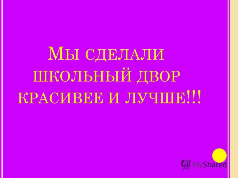 М Ы СДЕЛАЛИ ШКОЛЬНЫЙ ДВОР КРАСИВЕЕ И ЛУЧШЕ !!!