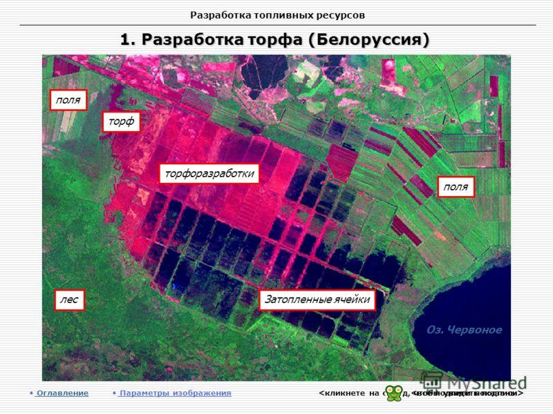 Разработка топливных ресурсов 1. Разработка торфа (Белоруссия) Оглавление Оглавление Параметры изображения лес поля Затопленные ячейки торфоразработки Оз. Червоное поля торф