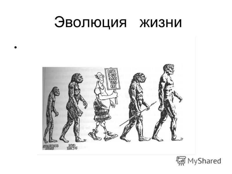 Эволюция жизни