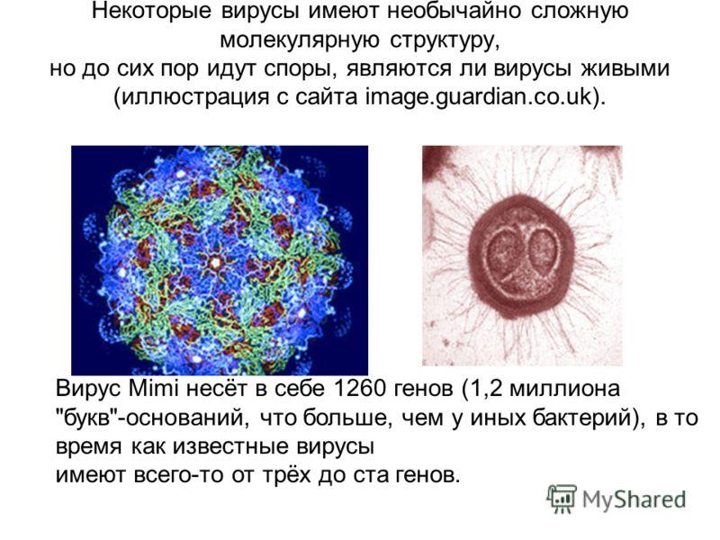 Некоторые вирусы имеют необычайно сложную молекулярную структуру, но до сих пор идут споры, являются ли вирусы живыми (иллюстрация с сайта image.guardian.co.uk).. Вирус Mimi несёт в себе 1260 генов (1,2 миллиона