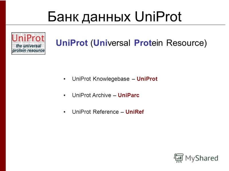 Банк данных UniProt UniProt (Universal Protein Resource) UniProt Knowlegebase – UniProt UniProt Archive – UniParc UniProt Reference – UniRef