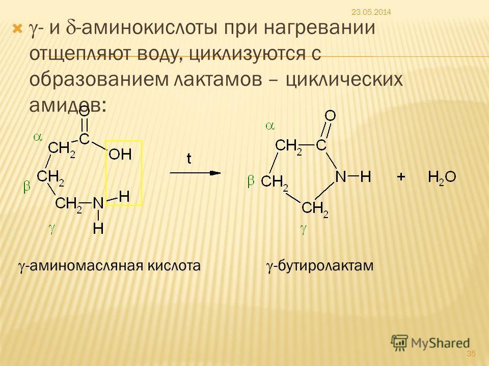 - и -аминокислоты при нагревании отщепляют воду, циклизуются с образованием лактамов – циклических амидов: 23.05.2014 35 -аминомасляная кислота -бутиролактам