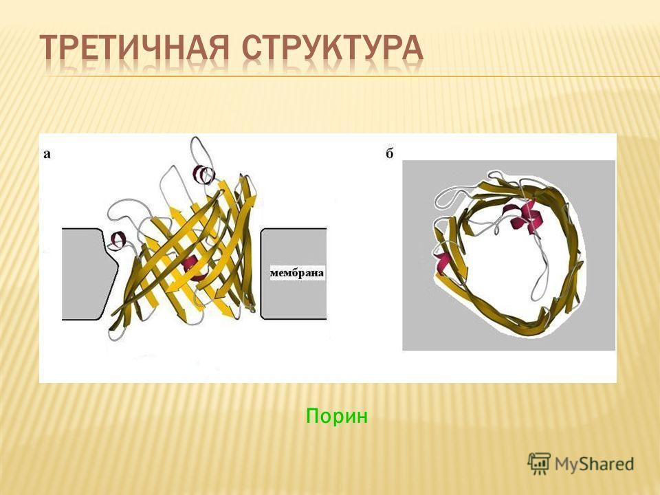 pdf A Look