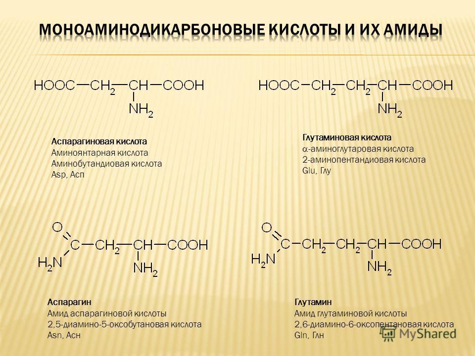 Аспарагиновая кислота Аминоянтарная кислота Аминобутандиовая кислота Asp, Асп Глутаминовая кислота -aминоглутаровая кислота 2-аминопентандиовая кислота Glu, Глу Аспарагин Амид аспарагиновой кислоты 2,5-диамино-5-оксобутановая кислота Asn, Асн Глутами