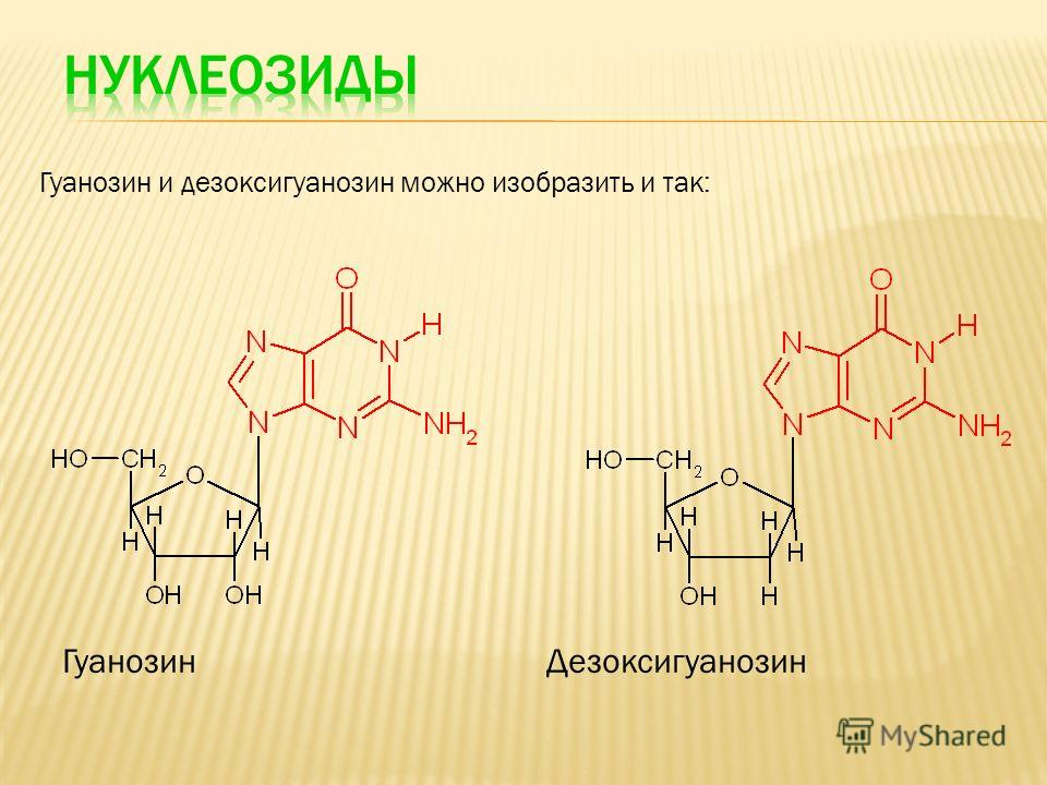 Гуанозин и дезоксигуанозин можно изобразить и так: