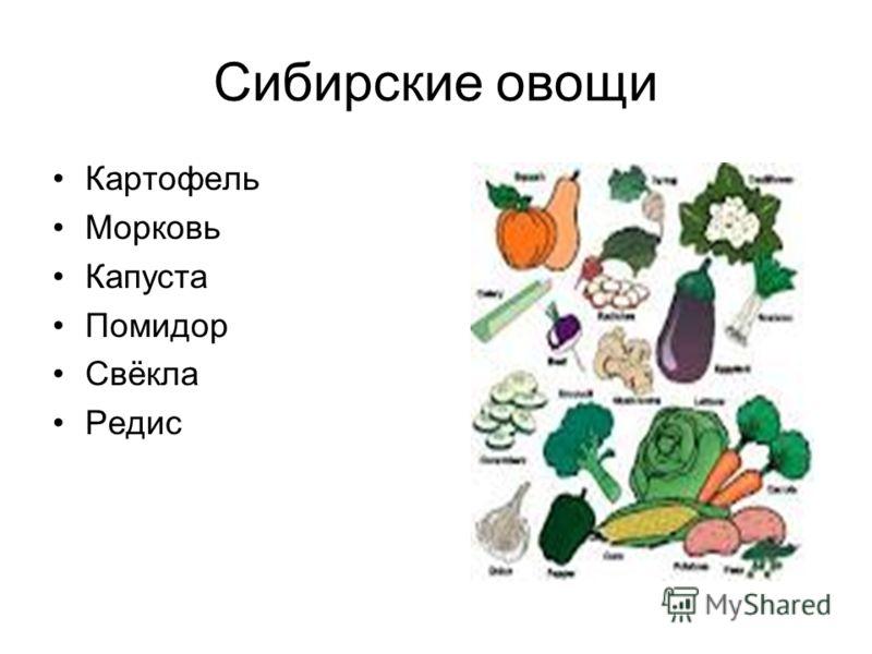 Сибирские овощи Картофель Морковь Капуста Помидор Свёкла Редис
