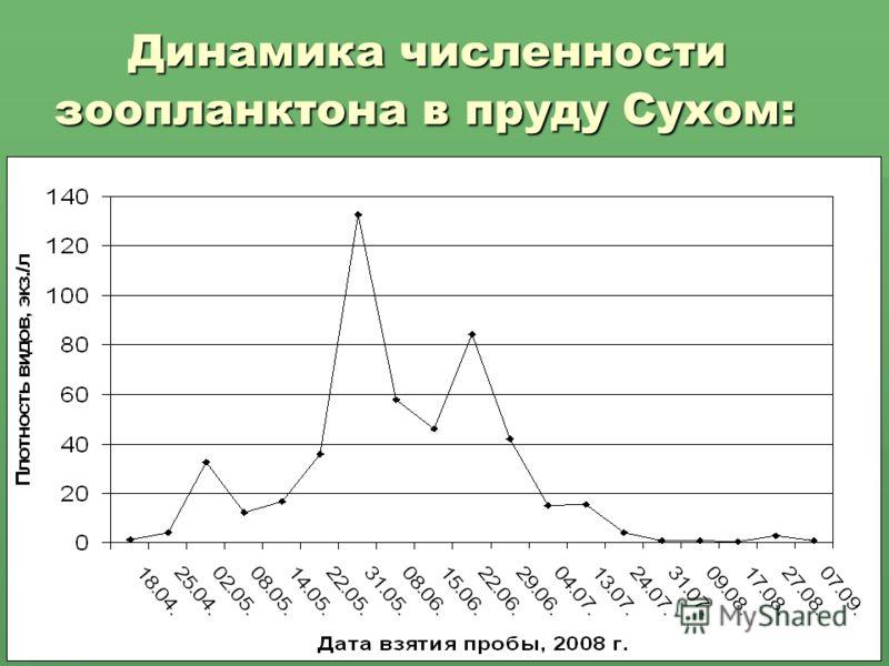 Динамика численности зоопланктона в пруду Сухом: Динамика численности зоопланктона в пруду Сухом: