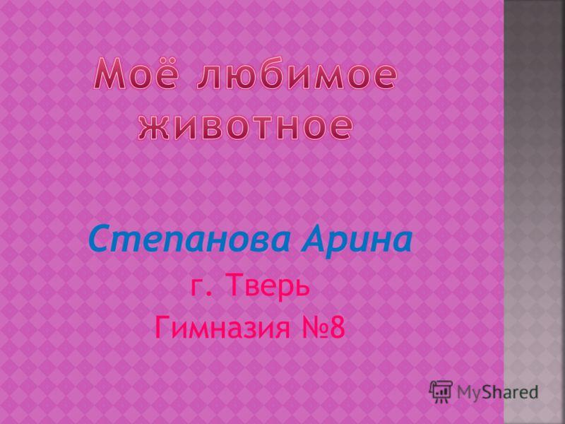 Степанова Арина г. Тверь Гимназия 8