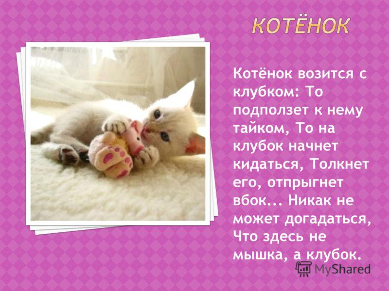 Котёнок возится с клубком: То подползет к нему тайком, То на клубок начнет кидаться, Толкнет его, отпрыгнет вбок... Hикак не может догадаться, Что здесь не мышка, а клубок.