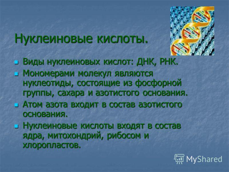 Нуклеиновые кислоты. Виды нуклеиновых кислот: ДНК, РНК. Виды нуклеиновых кислот: ДНК, РНК. Мономерами молекул являются нуклеотиды, состоящие из фосфорной группы, сахара и азотистого основания. Мономерами молекул являются нуклеотиды, состоящие из фосф