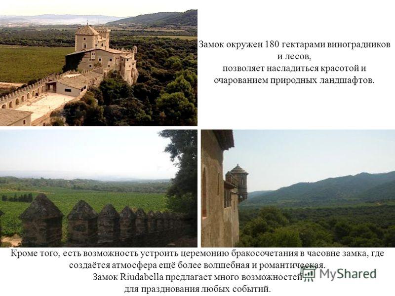 Замок окружен 180 гектарами виноградников и лесов, позволяет насладиться красотой и очарованием природных ландшафтов. Кроме того, есть возможность устроить церемонию бракосочетания в часовне замка, где создаётся атмосфера ещё более волшебная и романт