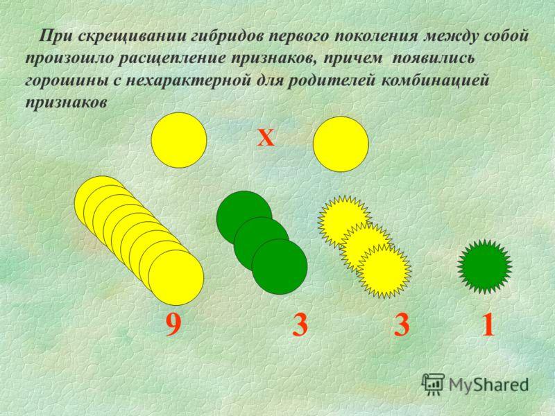 Х 9 3 3 1 При скрещивании гибридов первого поколения между собой произошло расщепление признаков, причем появились горошины с нехарактерной для родителей комбинацией признаков