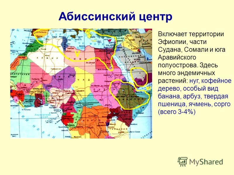 Абиссинский центр Включает территории Эфиопии, части Судана, Сомали и юга Аравийского полуострова. Здесь много эндемичных растений: нуг, кофейное дерево, особый вид банана, арбуз, твердая пшеница, ячмень, сорго (всего 3-4%)