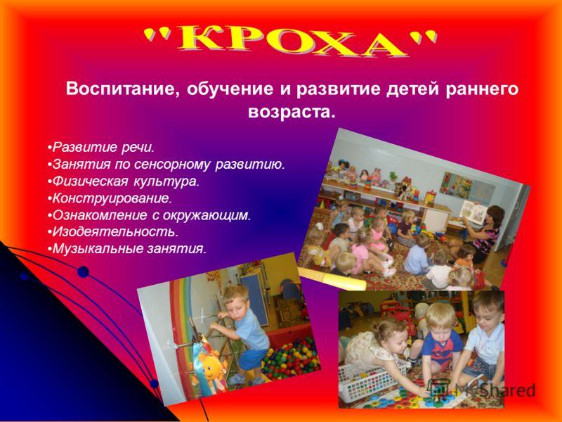 Воспитание, обучение и развитие детей раннего возраста. Развитие речи. Занятия по сенсорному развитию. Физическая культура. Конструирование. Ознакомление с окружающим. Изодеятельность. Музыкальные занятия.
