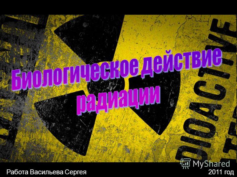 Работа Васильева Сергея2011 год