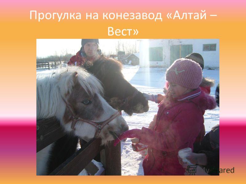 Прогулка на конезавод «Алтай – Вест»