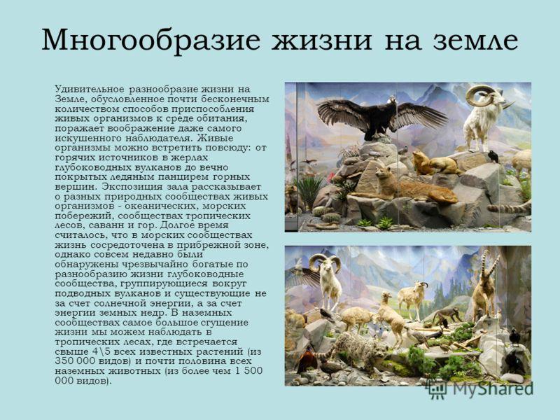 Многообразие жизни на земле Удивительное разнообразие жизни на Земле, обусловленное почти бесконечным количеством способов приспособления живых организмов к среде обитания, поражает воображение даже самого искушенного наблюдателя. Живые организмы мож