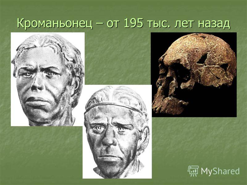 Кроманьонец – от 195 тыс. лет назад