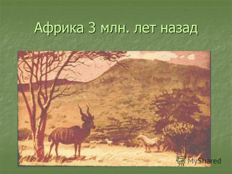 Африка 3 млн. лет назад