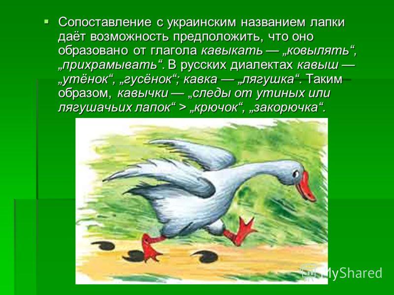 Сопоставление с украинским названием лапки даёт возможность предположить, что оно образовано от глагола кавыкать ковылять, прихрамывать. В русских диалектах кавыш утёнок, гусёнок; кавка лягушка. Таким образом, кавычки следы от утиных или лягушачьих л