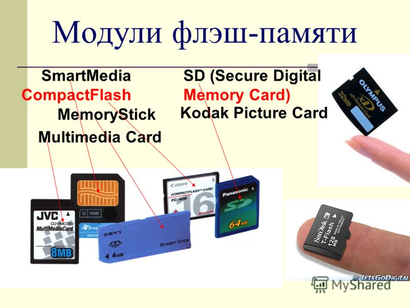 SmartMedia CompactFlash MemoryStick Multimedia Card SD (Secure Digital Memory Card) Kodak Picture Card Модули флэш-памяти