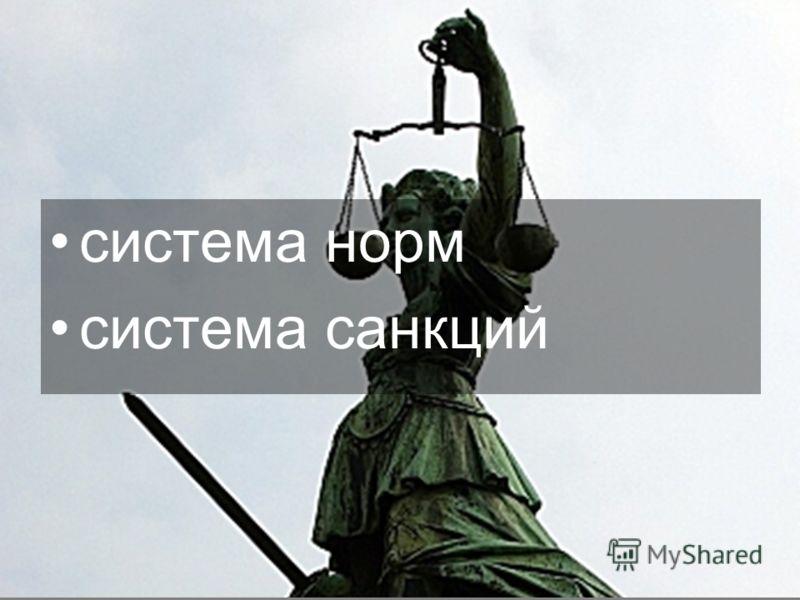 система норм система санкций