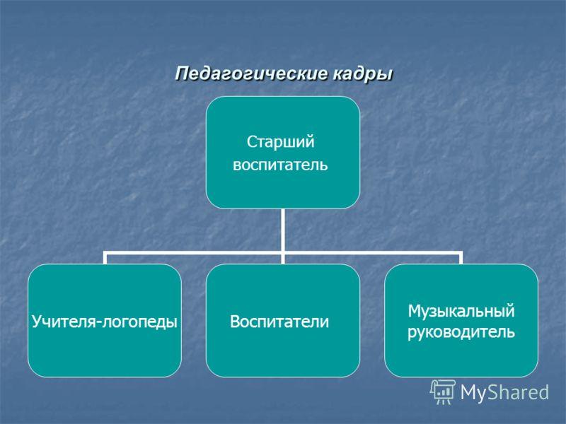 Педагогические кадры Старший воспитатель Учителя- логопеды Воспитатели Музыкальный руководитель