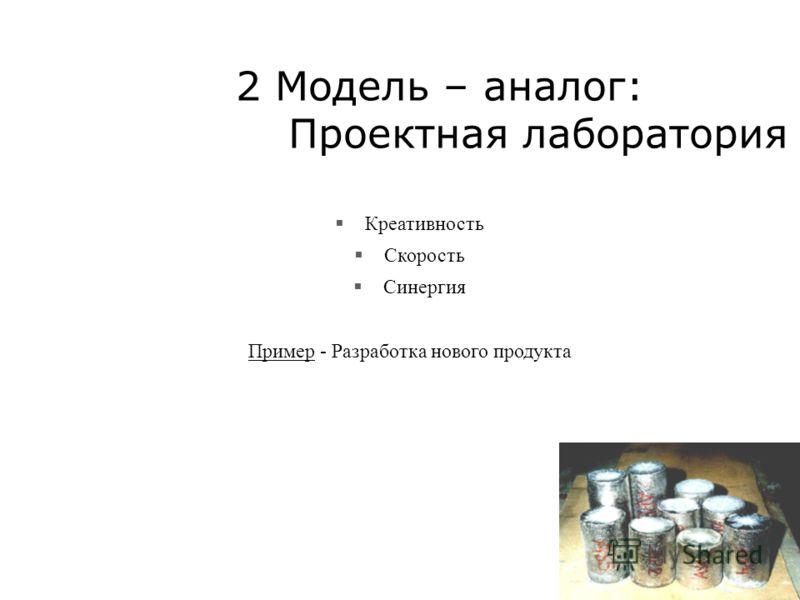 2 Модель – аналог: Проектная лаборатория Креативность Скорость Синергия Пример - Разработка нового продукта