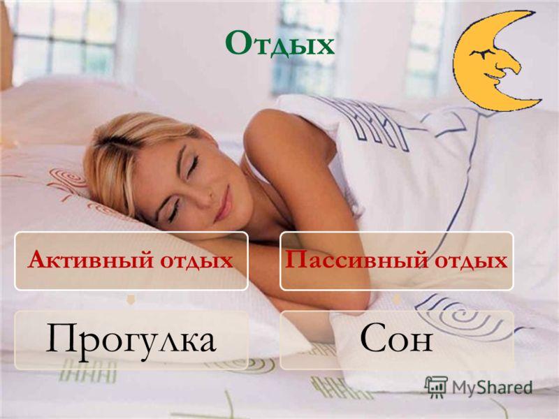 Отдых Активный отдых Прогулка Пассивный отдых Сон