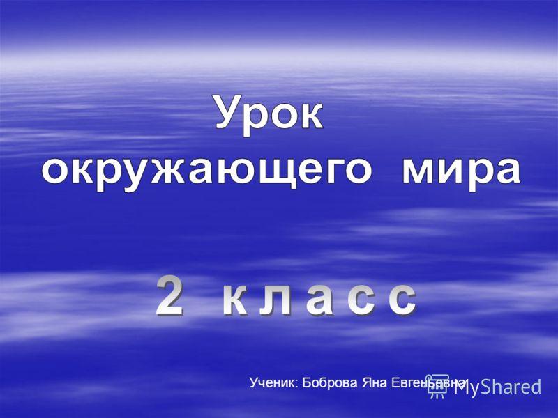 Ученик: Боброва Яна Евгеньевна